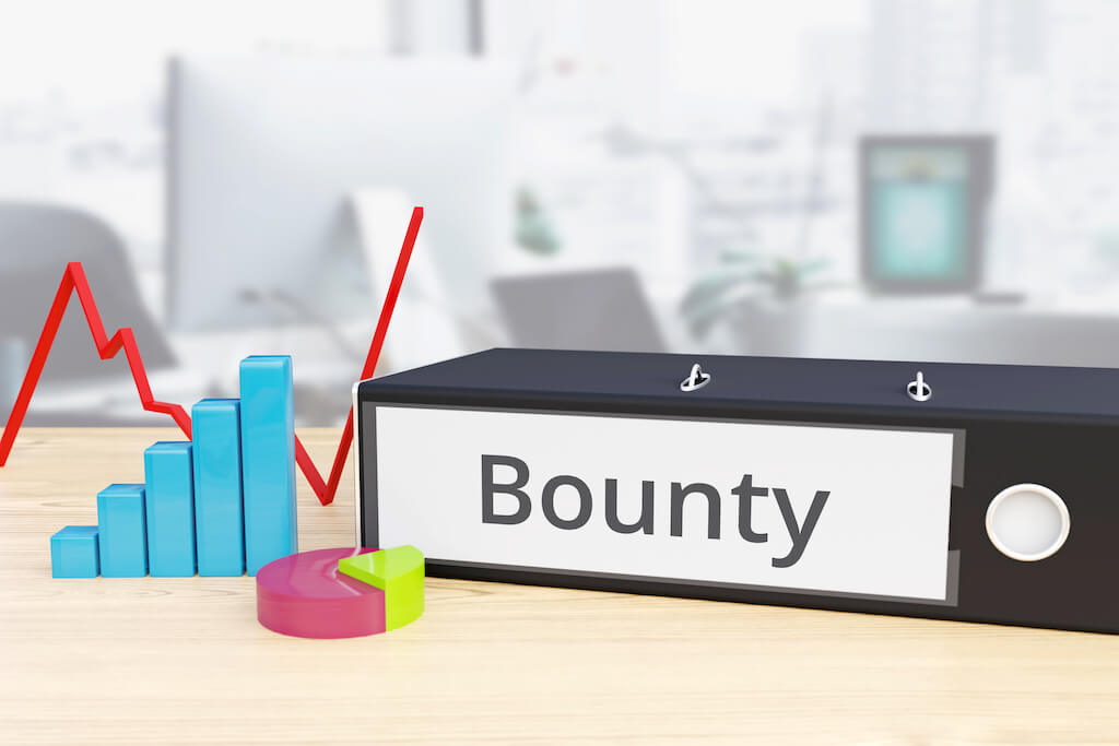What is Crypto Bounty
